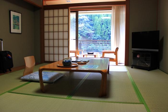お部屋はファミリーにもぴったりのゆったりとした広さです。窓からは十津川村の雄大な自然の景色を眺められます。