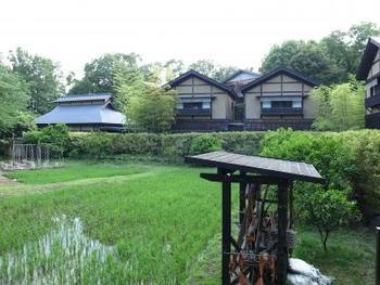 伊豆高原「きらの里」は日本の原風景を楽しめる温泉郷です。お風呂の種類も多く、まるで故郷に帰省したかのような感覚を味わえる温泉郷なので、宿泊というより、滞在というような感覚でとても心が癒やされる施設なんです。