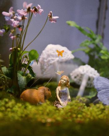 パープルの花をいれてポイントカラーに。苔だけのテラリウムは背が低くなりがち。花やエアプランツ・模型などを入れると、色の変化や立体感が出ますよ。