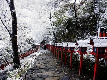 こちらは、京都の「貴船神社」。雪に覆われた長い階段が本宮へと続く光景は、神聖そのものです。