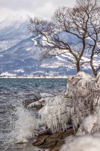 「氷の芸術」といわれ、ときには4mを超える自然のオブジェができあがることも。陽光にキラキラと映える姿はほんとうに美しい♪