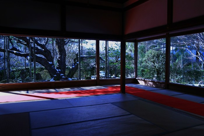 「額縁庭園」で知られる、京都・洛北の「宝泉院」。息をのむほど美しい雪景色が、まるで水墨画のごとく広がっています。居住まいを正したくなるような、静寂で浄らかな空気に包み込まれます。
