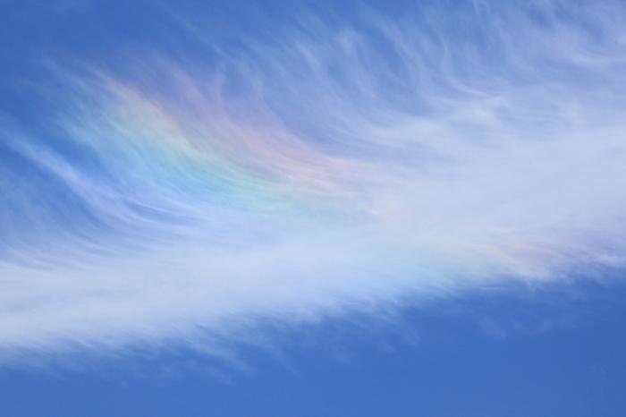 天使の羽が風になびいているように神秘的な風景。