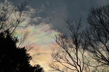 良いことが起こるといわれている彩雲が地震の予兆になるとは信じたくないですよね。珍しく、そして目を奪われる現象なだけに、吉兆とも、不吉の前兆とも捉えられる場合があったのかも……。