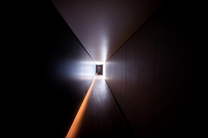 玄関から展示棟までの内部回廊。幻想的な、世界へと誘うようです。