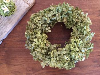 こちらはアジサイを園芸用に品種改良したアナベルのリース。 紫陽花よりも繊細な雰囲気ですね。