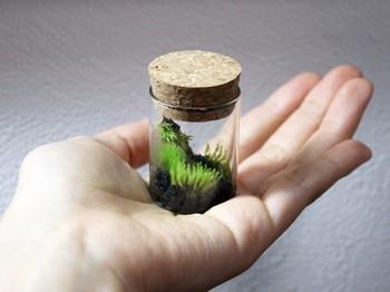 小さなコルクボトルをいくつも集めて贈り物に。じっと見つめていると、瓶の中の世界に吸い込まれそう。ピンセットでの細かい作業になるので、手先の器用な方は是非トライしてみて。