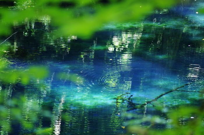 青池はもちろんのこと、白神周辺には魅力的な場所がたくさんあります。 都会の煩わしさから逃れて、自然にめいっぱい触れることができます。 この夏にぜひ足を延ばしてみてください♪