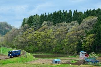 山里をのんびりと走る、たった一両だけの電車。都会に暮らしているととてもインパクトのある風景でもあります。田舎とよばれる地域では基本的に車社会だということもあり、平日の日中などはこのようなのんびりとした風景に出逢えます。