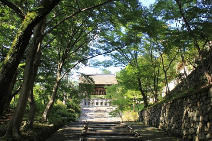 毘沙門堂は、京都市山科区に位置する毘沙門天を本尊とする寺院です。伝承によると、703年に行基によって開祖された出雲寺が毘沙門堂の前進となっており、春は桜、秋は紅葉の名所として親しまれています。