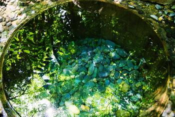 清正井は、湧水(地下水が地表に自然に出てきたもの)の井戸。携帯の待ち受けにすると運気がアップすると言われ、パワースポットとして一躍有名になりました。水面に映るきらめく緑に、すがすがしい気持ちになりそう。