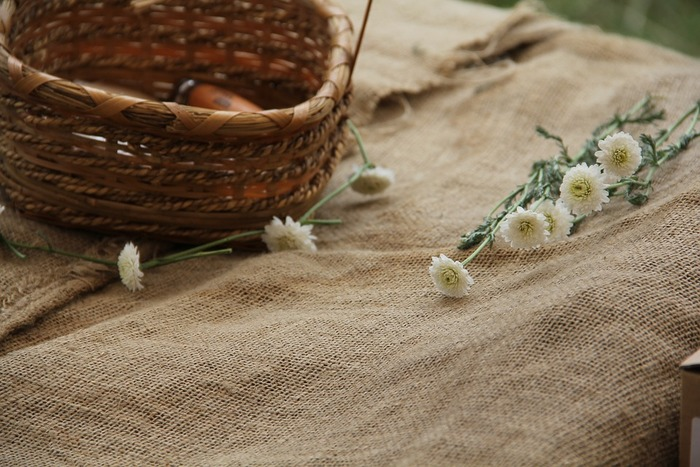 人気で比較的手に入りやすい香りの良いカモミールは、味覚だけでなく鼻に抜ける香りもとっても柔らか。リラックスのお供に♪