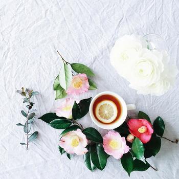 椿って、咲き方によっては、本当にバラのように見えますね!シンプルな和風庭園には一重咲き、和洋取り入れたお庭には千重咲きや唐子咲きはいかがでしょうか?育て方も、土壌を選ばず、お手入れも簡単だから、寒い時期のお庭の花木をして、椿をおうちに迎えてみませんか?
