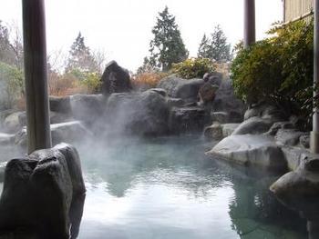 選べるアラカルトランチと日帰り入浴がセットになったプランもあり、食と温泉でゆったりくつろげます。