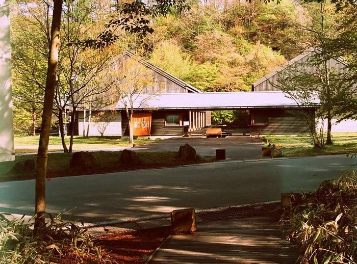 東京駅から北陸新幹線に乗って1時間「軽井沢駅」から無料シャトルバスに乗って約20分。軽井沢星野エリアにある「トンボの湯」は、源泉かけ流しで開放感あふれる露天風呂と内湯、サウナが楽しめる日帰り温泉施設です。大正4年の開湯より、たくさんの別荘族や観光客を癒し続けています。