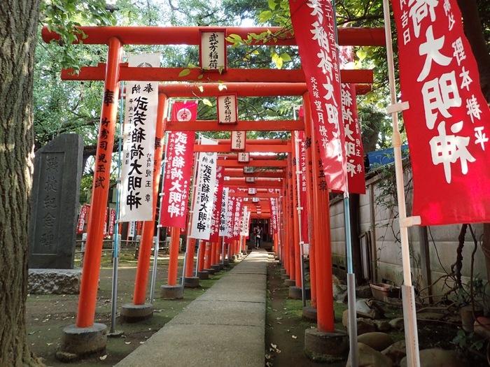 参道脇には、武芳稲荷神社の鳥居が連なります。どうして境内にお稲荷さんが祀られているのかというと、元々この土地の地主神が稲荷であり、お寺と神社が同じ敷地内に建立されるのは、江戸時代までは普通の事でした。  こちらのお稲荷さんは、出世にご利益があると言い伝えられ、鳥居が多いのも念願叶った人が奉納していったためです。江戸時代には、こういった鳥居奉納がとても流行ったそうですよ。