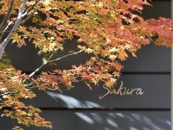 東京染井温泉Sakuraは、有名な桜「染井吉野(ソメイヨシノ)」発祥の地・東京豊島区駒込にある日帰り温泉施設。JR山手線・巣鴨駅A1出口から徒歩8分の好立地にありますが、「巣鴨駅南口ロータリー先植込み付近」からは無料送迎バスも運行しています。