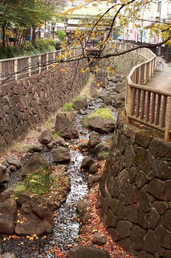 飛鳥山公園から明治通りを渡ってすぐのところには、王子音無親水公園があります。旧石神井川を整備した公園で、江戸時代にあった滝や橋が再現されているほか、水車や岩場、自然石のベンチが設けられています。循環水を使っているため水遊びも安心。