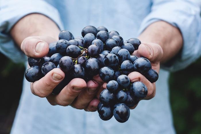 芳醇な香りと味わいに魅せられ、その日の疲れをワインで癒やす方も多いはず。でも、ワインセラーの購入を考えないのであれば、長期熟成、長期保存を完璧にするのは難しいです。  リカーショップやデパートのワインセラーが、ご自身のワインセラーと割り切り、当面飲む分だけを手元で賢く保存するというスタンスも有りでしょう。
