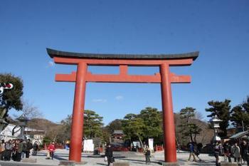 「三の鳥居」をくぐると正面に「鶴岡八幡宮」。