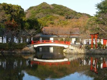 【画像は鶴岡八幡宮の「源氏池」の眺め】