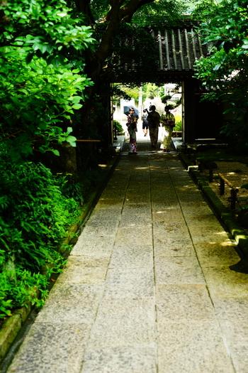 「田楽辻子のみち」の終点が「報国寺」。  「報国寺」の開門は午前9時。閉門は午後4時です。早起きして午前中に参拝するのがオススメ。人気も少なく空気も爽やかです。
