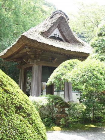 本堂を参拝し、茅葺屋根の「鐘楼」脇に、竹林の庭へと通じる門があります。(庭の拝観料は200円)