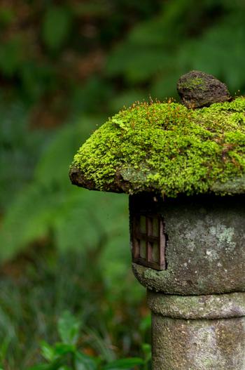 竹林内には、石仏や石灯籠がひっそりと佇んでいます。