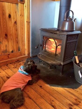 薪ストーブではゆっくり炎を観賞したり、クッキングも楽しめます。ワンちゃんにお肉を焼いてあげたら、すごく喜びそうですね♪この暖かいスタイルなら、冬のキャンプも楽しそうです。
