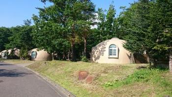 ワンちゃんと宿泊できる施設は、生活総合誌「いぬのきもち」がプロデュースの「いぬのきもちコテージ」、アウトドアブランド「コールマン」がプロデュースのオートキャンプ場「コールマンキャンプグラウンド」、森の中に点在する不思議なドーム型コテージ「オルサ」、ワンちゃんの専用ドッグランや温泉も付いた「バケーションヴィレッジ 愛犬家族」があります。それぞれ個性があって楽しそう…。こちらは「オルサ」です♪