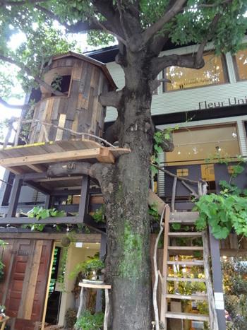 ツリーハウスが有名な「Les Grands Arbres」は、系列のフラワーショップである「Fleur Universelle(フルール・ユニヴェセール)」の階上にあります。