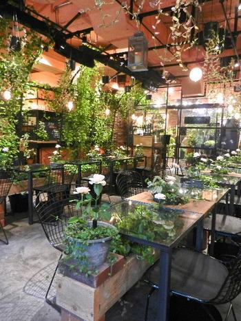 テーマは「温室」。店内はガラスとアイアンフレーム、そしてあふれんばかりの緑と、色鮮やかな花々で埋めつくされています。