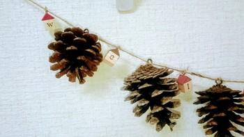 松ぼっくりを拾っておいて、ガーランドに。  綿をデコレーションしたり、松ぼっくりを色付けしたりしても、  クリスマスっぽいガーランドができあがりそうです。