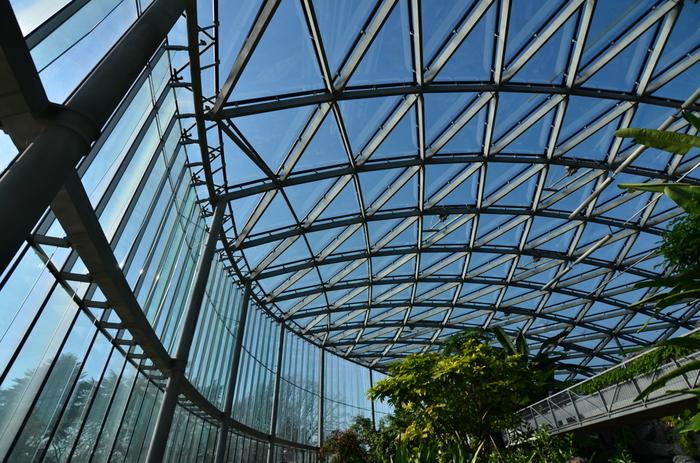 高さ約15mある「大温室」内は、様々な角度から植物を鑑賞できるように、配慮されて設計されています。館内に架かった橋からは、亜熱帯の大きな植物を間近に見ることだってできちゃいます。