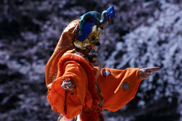 1598年に豊臣秀吉が花見のために盛大な宴(醍醐の花見)を催したことにちなんで、醍醐寺では、太閤花見行列が行われます。