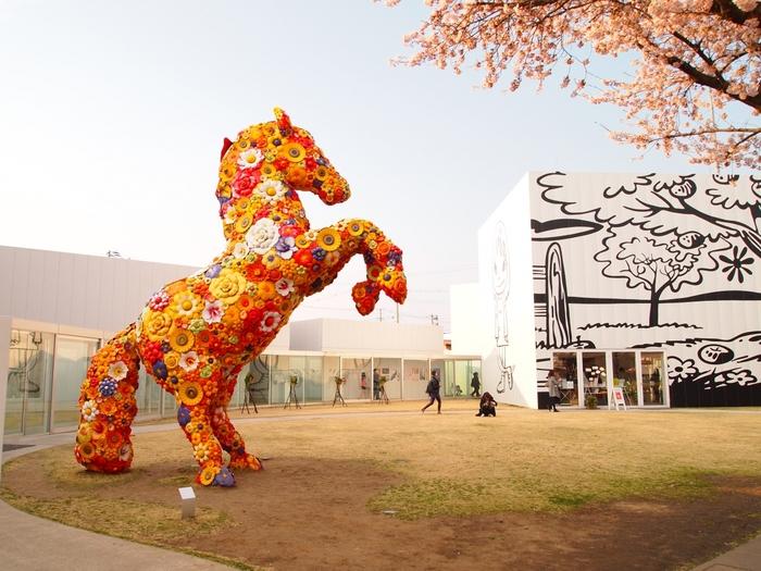 韓国を代表するアーティスト、チェ・ジョンファによる「フラワー・ホース」。カラフルなフラワーで全身を覆われた巨大な馬のオブジェは、十和田市現代美術館を象徴する作品のひとつです。