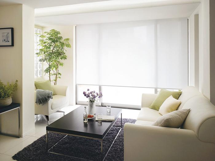 たまにはカーテンそのものの形を変えるのも素敵です。スクリーンタイプなら、幅がないだけお部屋を広くスッキリと見せてくれます。お気に入りの家具も映えそうです。