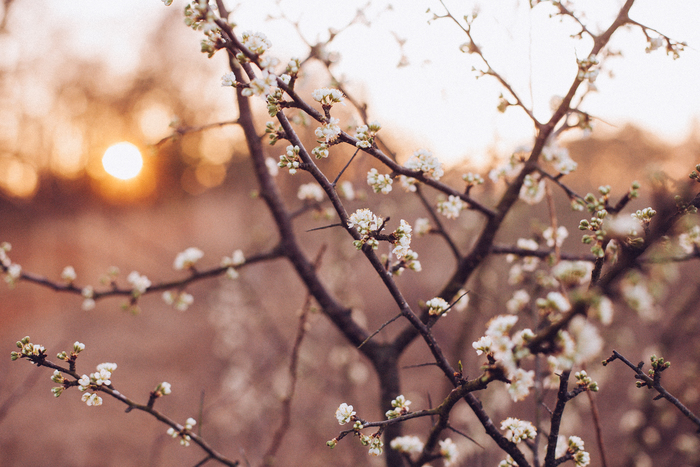 外の空気はまだまだ冷たいけれど、春は少しずつ近づいてきています♪お買い物に行っても、春服を目にすることが多くなってきましたよね。