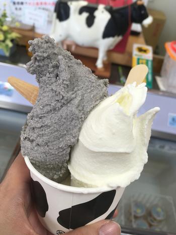 徳山牧場アイス工房のジェラートは、新鮮なミルクを使った濃厚な味わい。美星町は吉備高原の南部に位置し、酪農と農業が盛んな町です。美星町を訪れたのなら、ぜひこの産直市場へ。敷地内には、食事処やパン屋などもあります。
