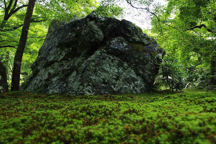 【「宝厳院」・『獅子吼(ししく)の庭』に置かれる「碧岩」。】