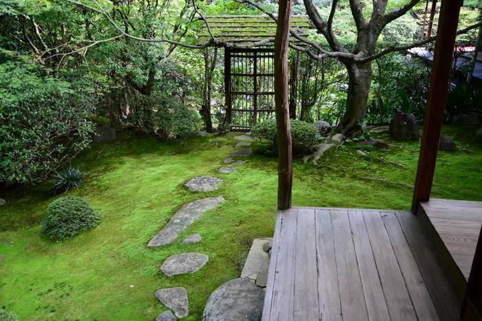 【「桂春院」の露地庭『侘の庭』】