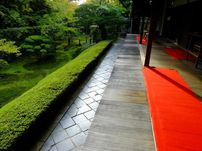 【妙心寺塔頭「桂春院」方丈前に広がる『真如の庭』】