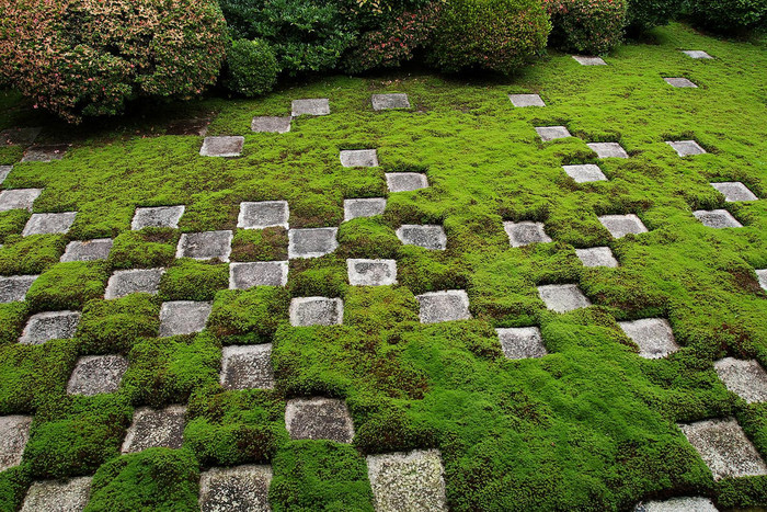【東福寺「本坊庭園」の小市松模様が斬新な『北庭』】