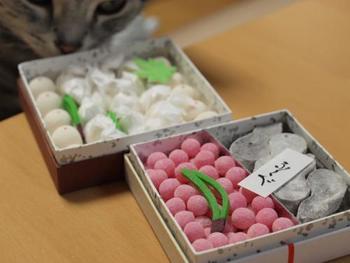 見た目もかわいい御干菓子は大徳寺納豆が入った和三盆製落雁や梅風味の物など。ちょっとした手土産として老若男女に喜ばれそうです。