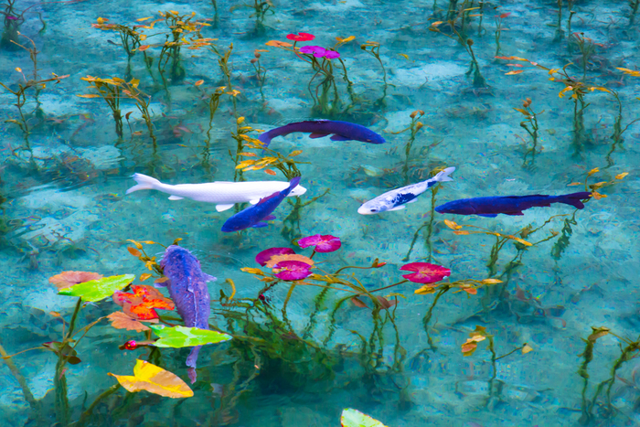 夢を見ているような錯覚にとらわれる神秘的な池。岐阜県関市の根道神社の近くにある名もない池で、その絵画のように美しい景観から「モネの池」ともいわれます。 印象派の画家クロード・モネが描いた「睡蓮」の連作によく似ていますね。