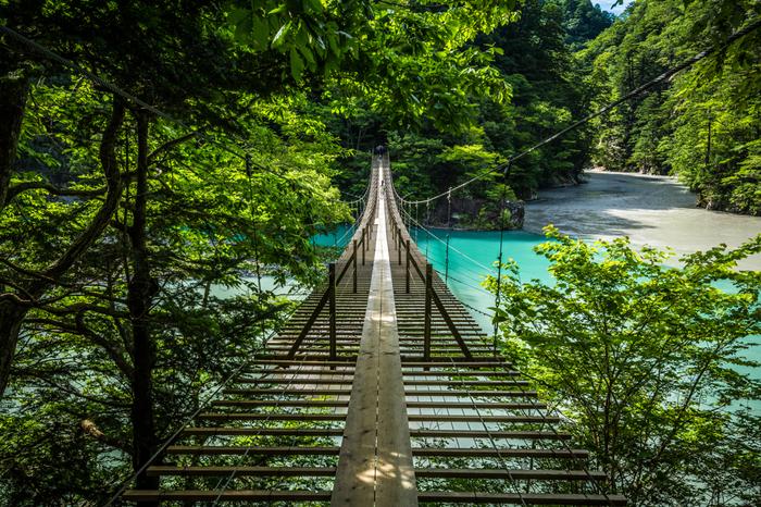濃い緑と湖面のブルーとのコントラストも印象的。吊り橋を渡った先にある展望台からの眺めも見事です。夏の生命力あふれる美しさはもちろん、秋の紅葉シーズンもおすすめ。夏とは全く違った光景に出会えます。