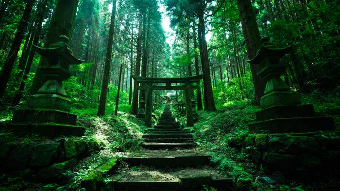 スタジオジブリ製作のアニメ映画『天空の城 ラピュタ』に登場しそうな神秘スポットといわれるこの神社。参道には、100基近くの灯籠が並び、森の奥へと誘います。神社の敷地に入ったとたんに空気が変わるといわれます。