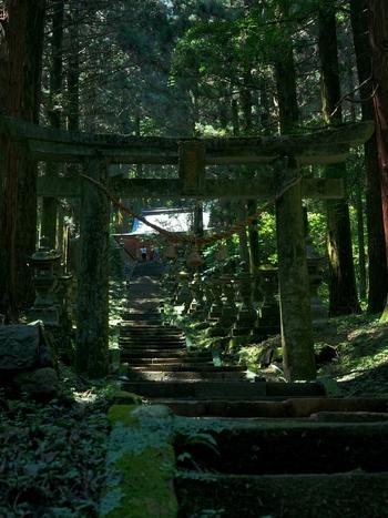 そのあまりにも神秘的なたたずまいがパワースポットとして話題の熊本県「上色見熊野座神社(かみしきみくまのいますじんじゃ)」。聖なる世界へ引き込まれそうな錯覚を覚えます。