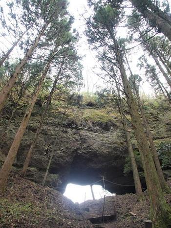 この神社でぜひ立ち寄りたいのが、穿戸岩(ほげといわ)。縦横約10mの大風穴で、健磐竜命の従者鬼であった八法師が蹴破ったという伝説があり、この岩にさわると困難を乗り越えて事を成し遂げられるご利益があるといわれています。ダイナミックな景観に息を飲みます。