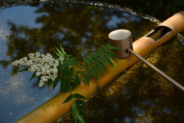 【『十牛の庭』に置かれた水琴窟は、手水鉢を用いた珍しいもの。一滴一滴奏でる清涼な音色は、古くから風流を好む多くの人びとに愛されてきました。】